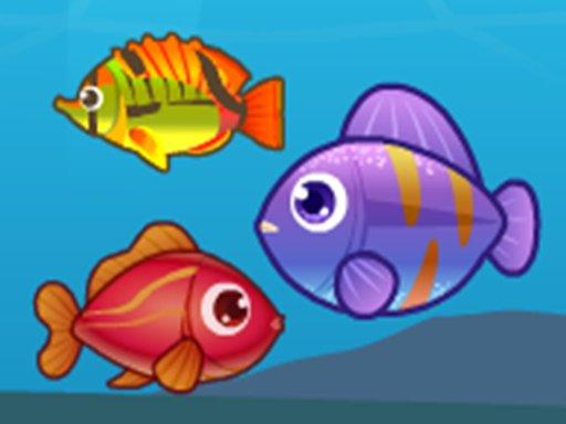 Play Big Fish Eat Small Fish 2 Game