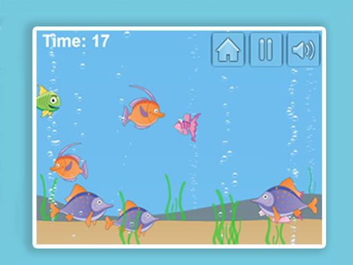 Play Aqua Challenge Game