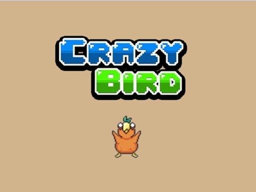 Play Crazy Bird Game