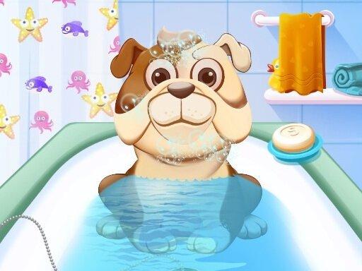 Play Animal Daycare Game