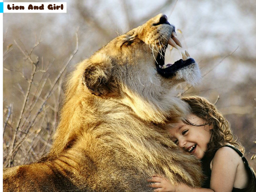 Play Lion And Girl Jigsaw Game
