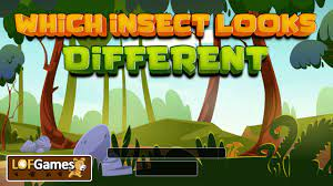 Play Which Insect Looks Different Game